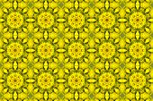 picture of kaleidoscope  - kaleidoscopic floral pattern - JPG