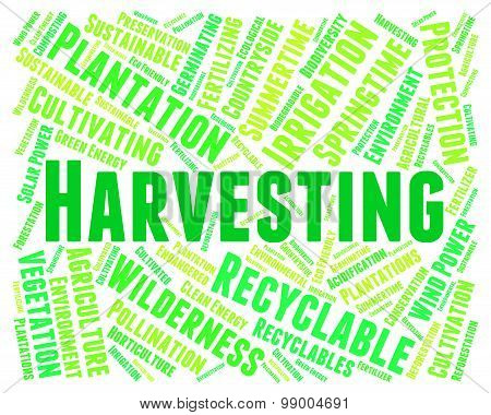Harvesting Word Means Plants Plant And Harvests