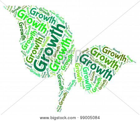 Growth Word Indicates Grows Words And Cultivates