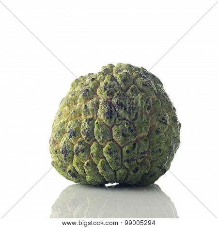 Ripened Custard Apple On White Background Shot in Studio.