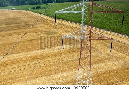 Powerlines On Wheat Field