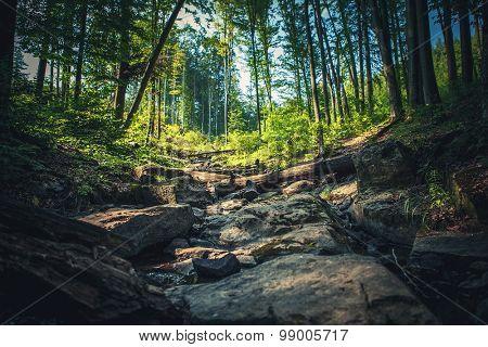 river flows through the stones