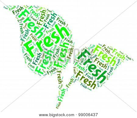 Fresh Word Shows Natural New And Freshness
