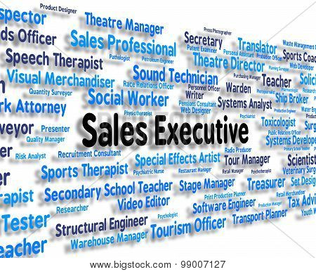 Sales Executive Shows Senior Administrator And Boss