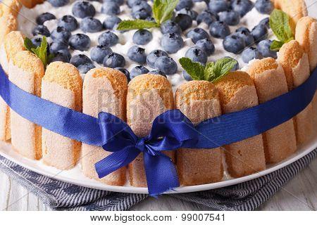 Beautiful Blueberry Cake Charlotte On A Plate Macro . Horizontal