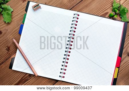 Opened spiral notebook with pencil and sharpener, acorns