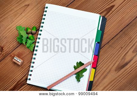 Paper spiral notebook with pencil, sharpener and acorns