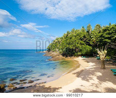On a Sunny Beach Sunshine Coast