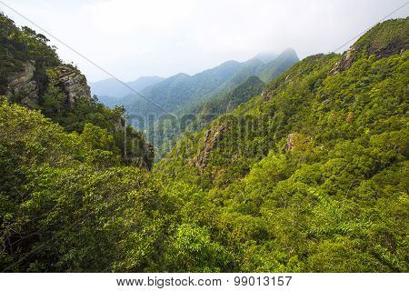 Foggy and lush mountain landscape at Langkawi in Malaysia