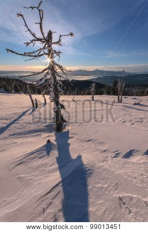 Fantastic orange morning landscape glowing by sunlight. Dramatic wintry scene with snowy trees. Gorgany ridge, Carpathians, Ukraine, Europe. Merry Christmas!