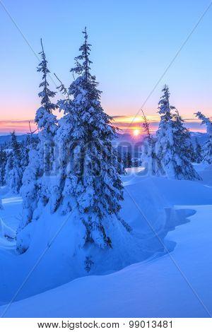 Fantastic orange evening landscape glowing by sunlight. Dramatic wintry scene with snowy trees. Gorgany ridge, Carpathians, Ukraine, Europe. Merry Christmas!