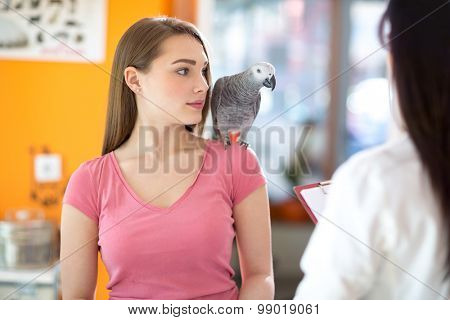 Owner with her pet beautiful African gray parrot in veterinary clinic
