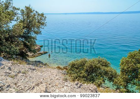 Rocky Beach With Trees And Bushes And Crystal Blue Sea