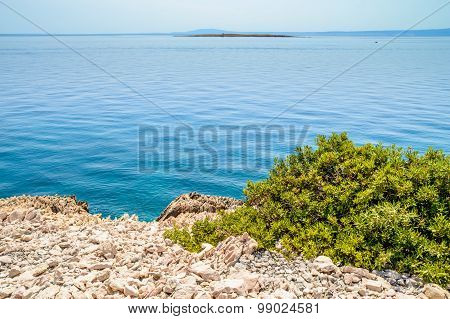 Rocky Coastline With A Bush And Crystal Clear Blue Adriatic Sea With Islands In The Background