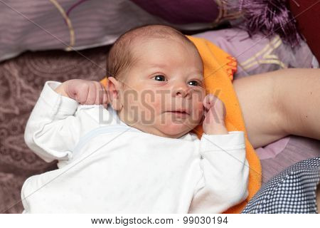 Newborn On A Blanket