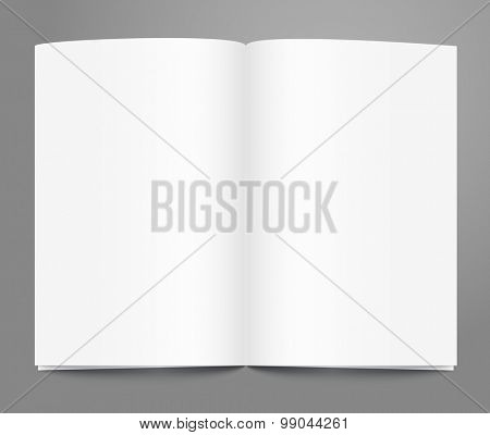 Open book page template. Ready for a content