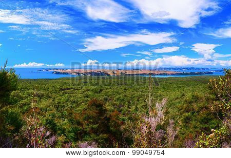 Rangitoto Island district of Auckland City. New Zealand.