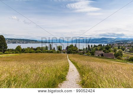 Panorama View Of Zurich Lake And The Alps
