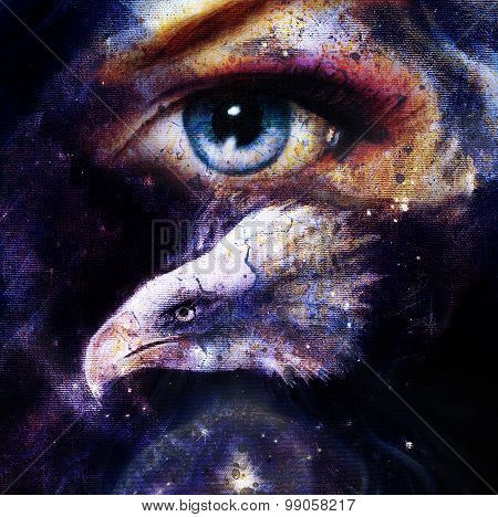 painting eagle with woman eye on abstract background space with stars. Wings to fly.