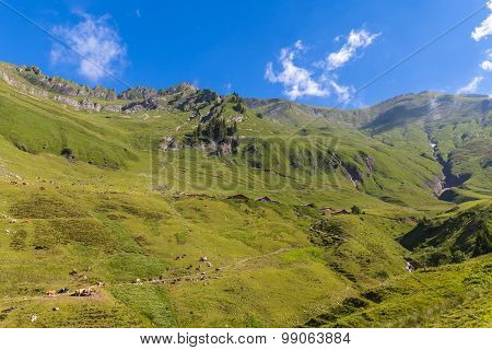 View Of The Alps Near Rothorn
