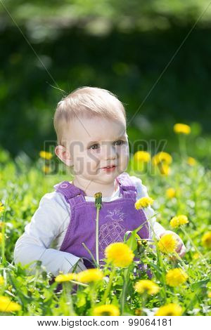 Portrait Of The  Little Girl Among The Blossoming Dandelions