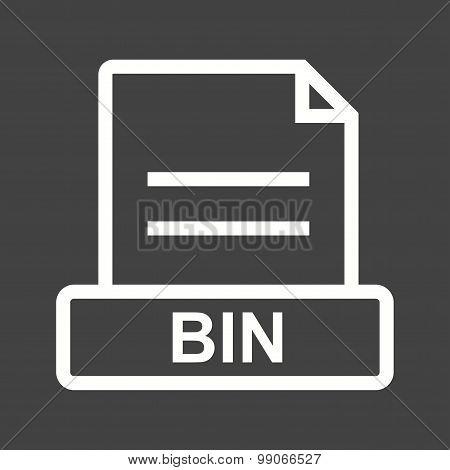 BIN File