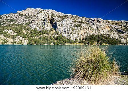 Mountain Lake Panta De Gorg Blau