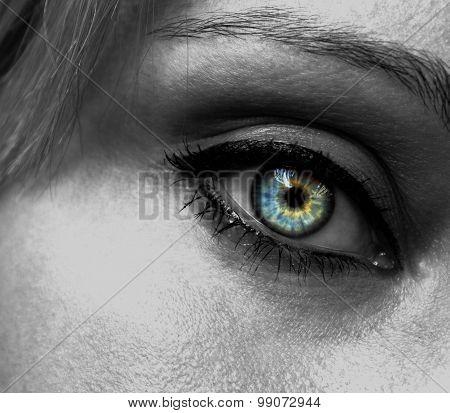 Women's eye