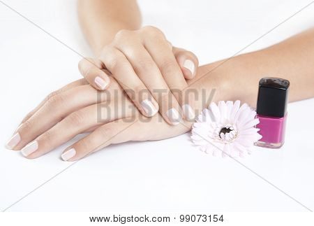 Manicured Nails With Nail Polish