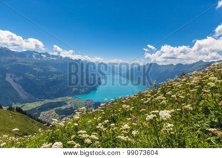 Aerial View Of Brienzer Lake And The Alps