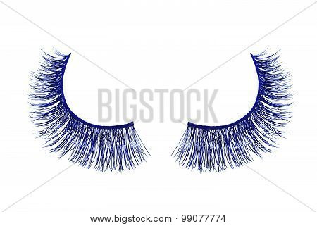Blue False Eyelash Isolated On White Background