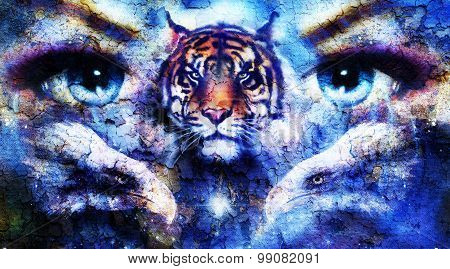 painting eagles and tiger with woman eyes on abstract background in space with stars. Wings to fly,