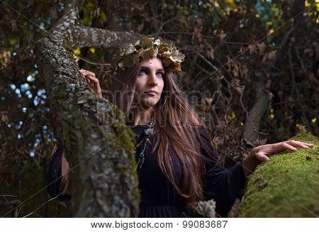 Woman In Dark Forest