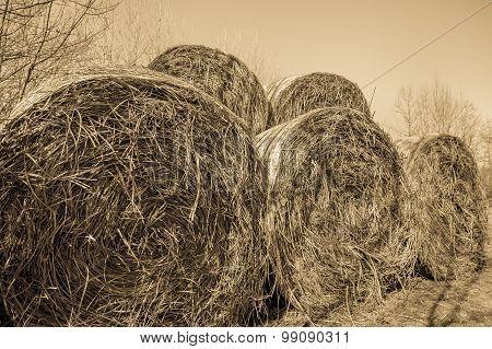 Vintage Effect , Hay Bales