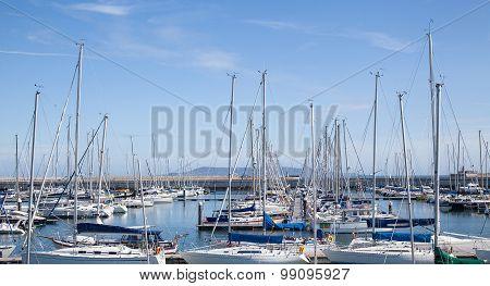 Yachts berthed at the marina