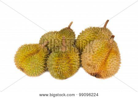 Tropical Fruits - Durian