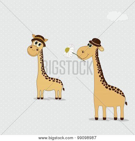 Two Cute Giraffes Hats