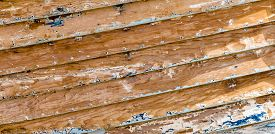 picture of scrape  - A close - JPG
