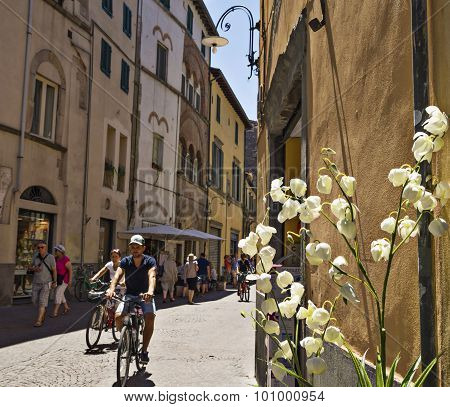Street view in Lucca ,Puccini 's city., Tuscany,   Italy.