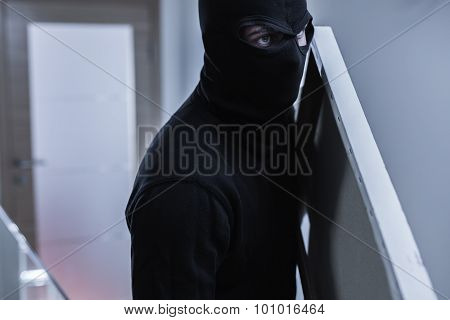 Robber Stealing Painting