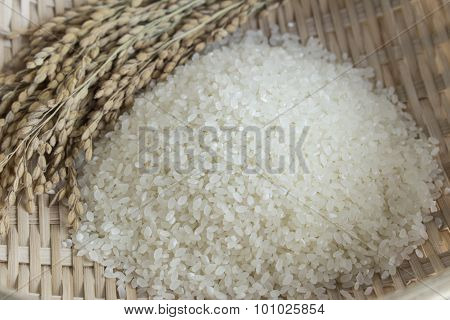 Rice And Rice Plants In A Bamboo Basket