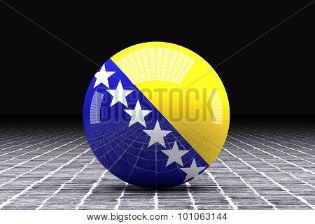 Bosinia Herzegovina Flag