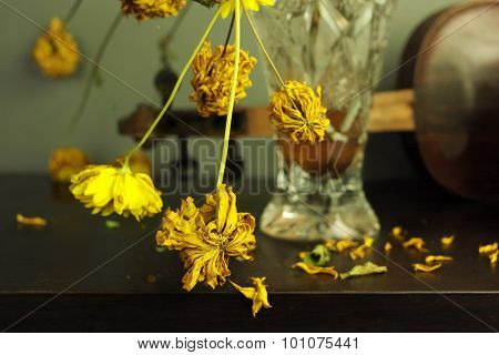Wilted Yellow Flowers