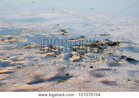 Salty Brine Kojashsky Lake In The Opuk Nature Reserve
