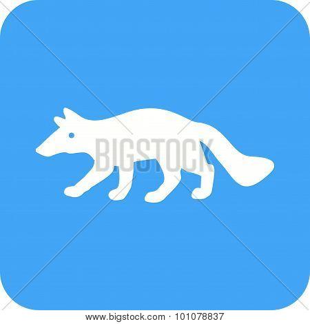 Wolf , Animal