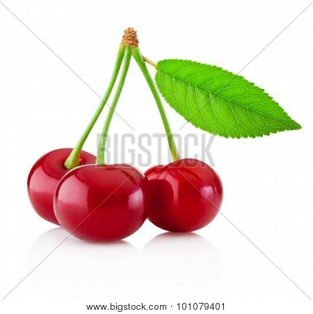 Three Ripe Cherries With Leaf Isolated On White Background