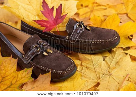 suede shoes on yellow autumn leaves background