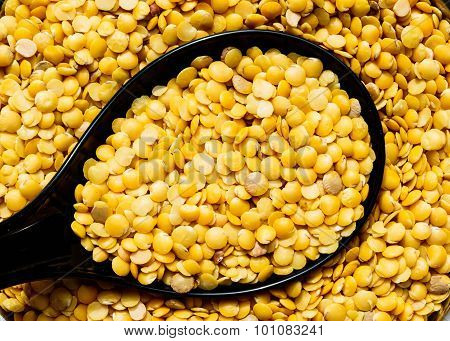 Closeup of split pigeon pea pulses kept on a spoon