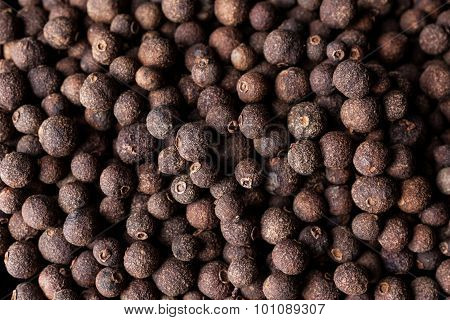 Allspice from above