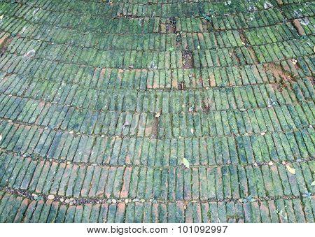Old Block With Lichen